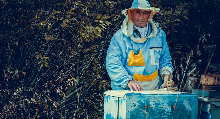 Утепление пчел на зиму
