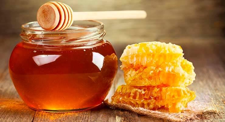 Какие факторы влияют на сбор нектара и выработку мёда