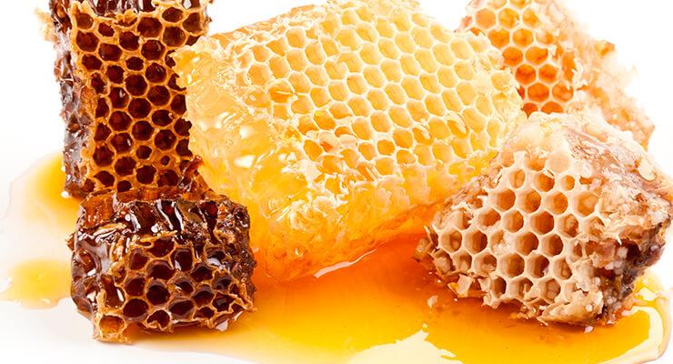 Состав и лечебные свойства медового пчелиного воска